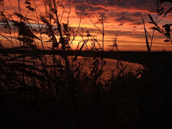 SUNRISE OVER FLEETWOOD MARSH by fleetwoodflyers