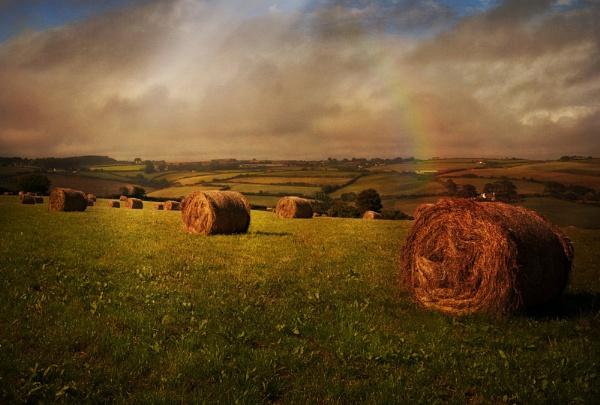 Cornish Fields by Audran