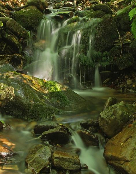 Ffrwd Brook. by Roly