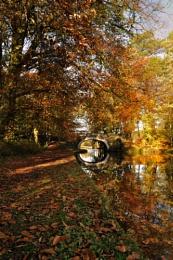 autumn's stately bridge