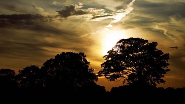 Sun-Down by HuntedDragon
