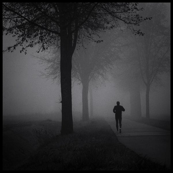 Morning mist by rhobbie