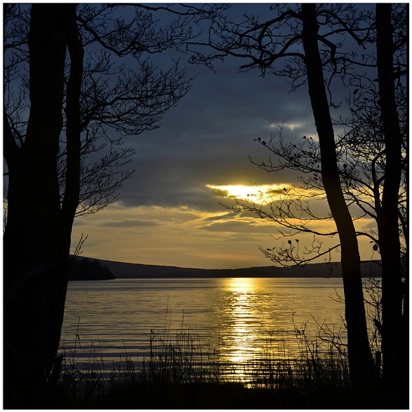 ""\""""Last Light on the Loch"""" by RonnieAG""600|599|?|en|2|c74ea0d4ba55da428bebf0a42cbd3047|False|UNLIKELY|0.28612199425697327