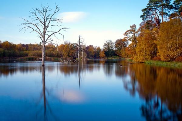 Clumber Lake by williamthorpe271