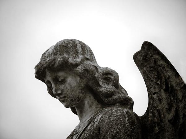 Angel by Alandyv8