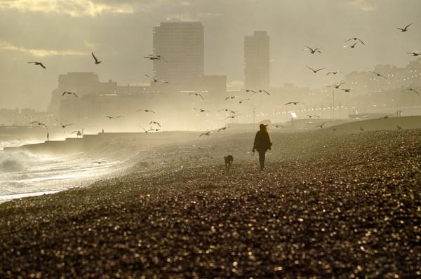 Beach Girl by Jazzmk