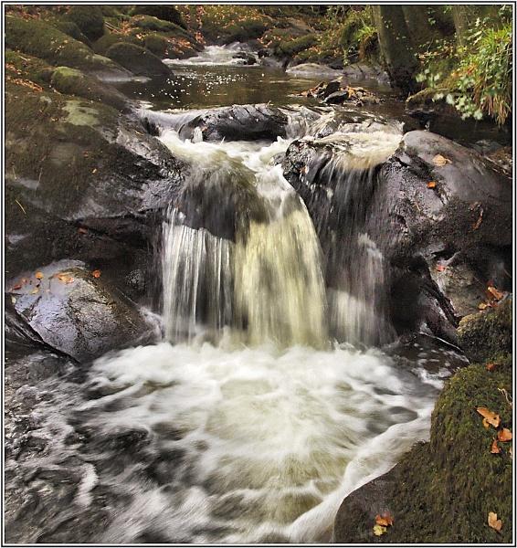 Autumn splashy washy by Tooth