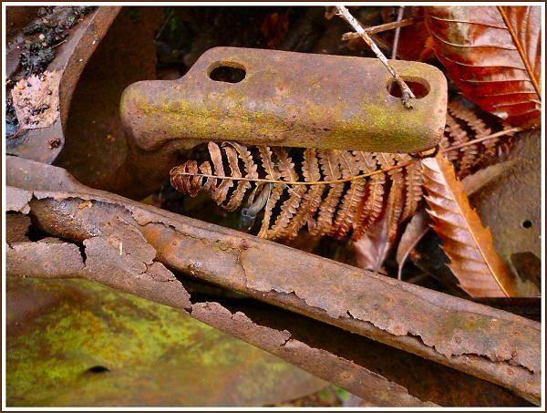 Rusting Ford by JPatrickM