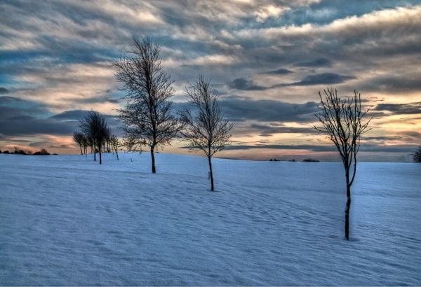 Christmas Dawn