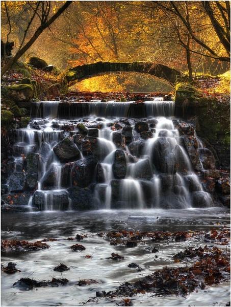 Sunnyhurst Autumnal Glow by JanieB43
