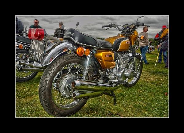 Suzuki by TonyBrooks