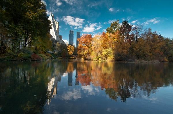 NY fall by Abdelrazek