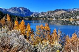 Fall Color at June Lake, California