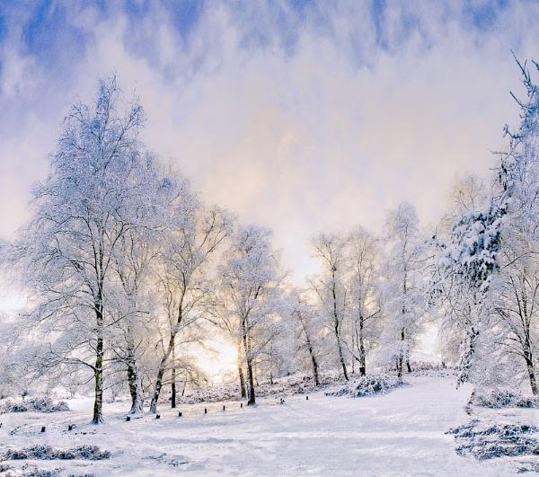 Snow Glow by thatmanbrian