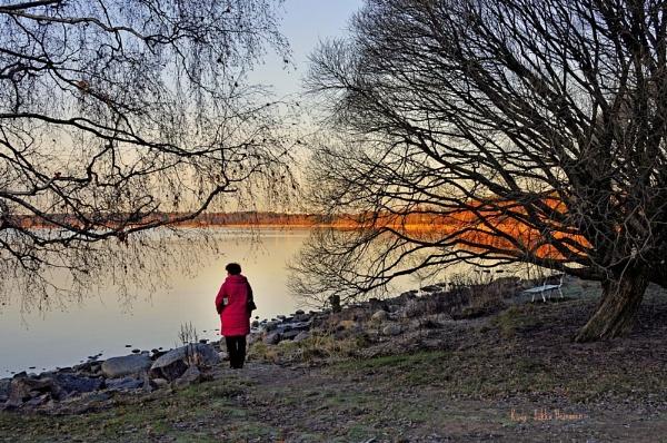 Early morning. by kuvailija