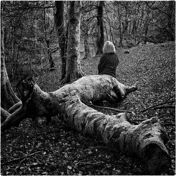 Autumn No More by GaryMoffat