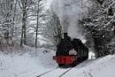Santa Express