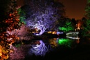 Syon Park's Enchanted Woodland 2011