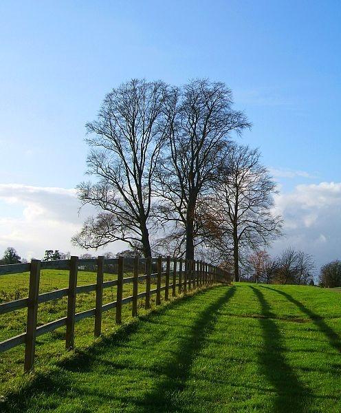 Clandon Park Surrey by nytecam