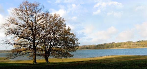 Rutland water by david1000
