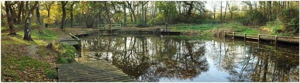 Brownlee\'s Pond by jcolind