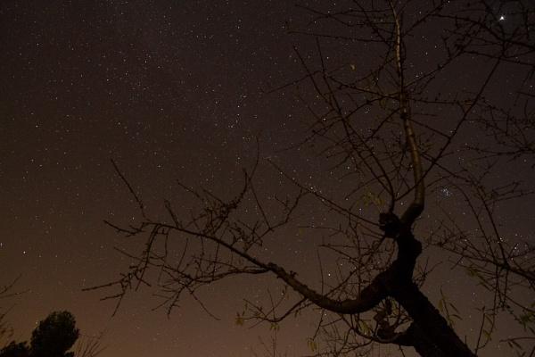Stars by nicletog