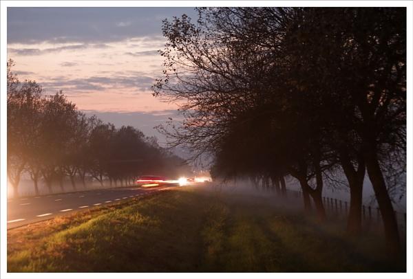 Night mist by rontear
