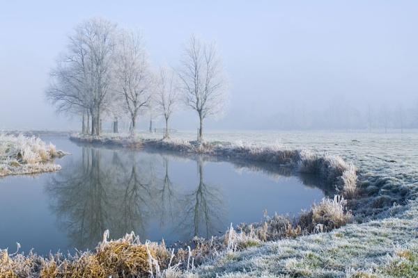 Frosty Morning by JanetKenyon