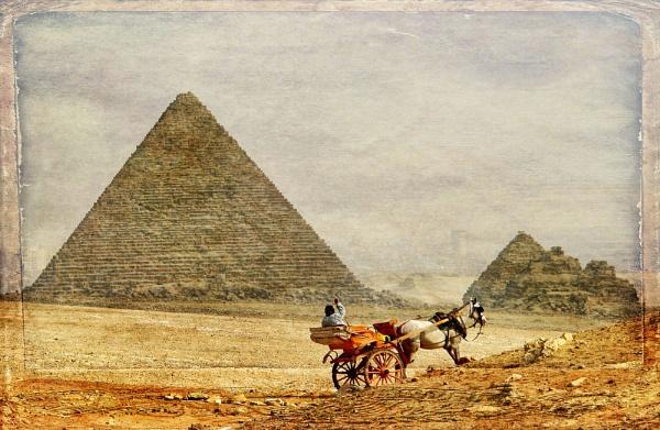 Egypt 2011 by floydpink