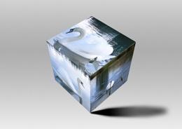 Swan-ky cube