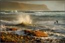 Orkney Shoreline