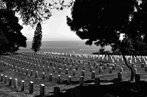 Military cemetery 2011 by TrainingMan