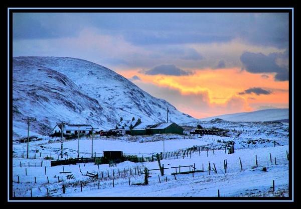 Winter sun by pringle