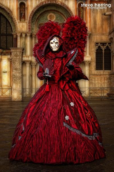 Venice Carnival. by sherring