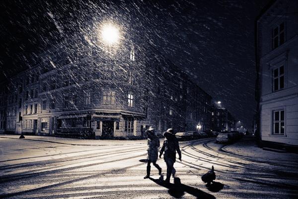 First Snowfall 2 by EllieEdge