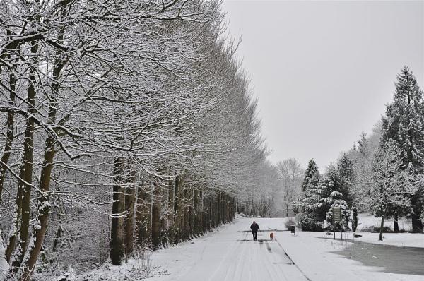 Winter Walk,Kilsyth,Scotland
