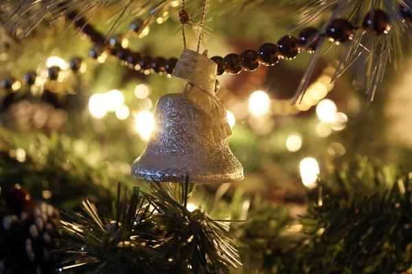 Celebration of Christmas by DJLeroy