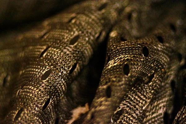 braided cloth by HuntedDragon