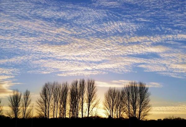 Sky scape by HELANA