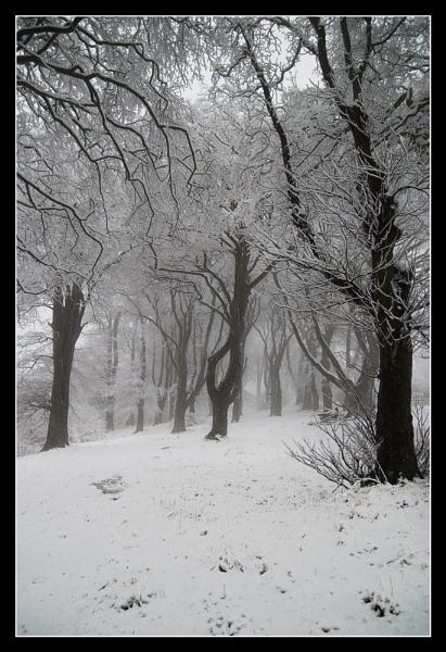 December scene by Dugi34