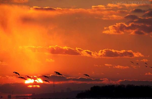 Sunset by e_villeda