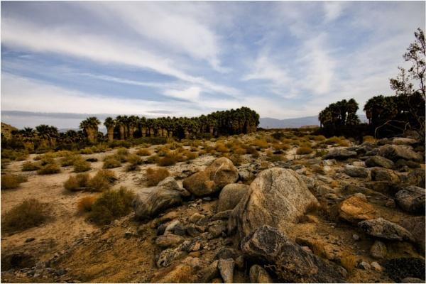 Desert Hike by Daisymaye