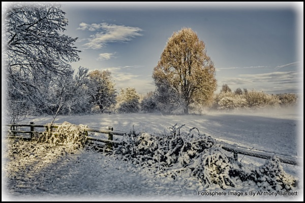 Snow in the park by fotosphere