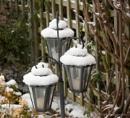 Lamps in Winter