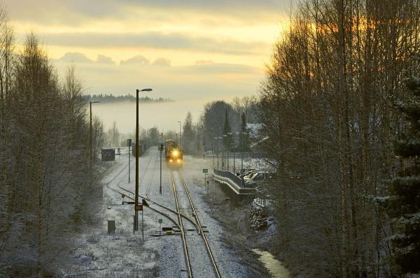Evening train. by kuvailija