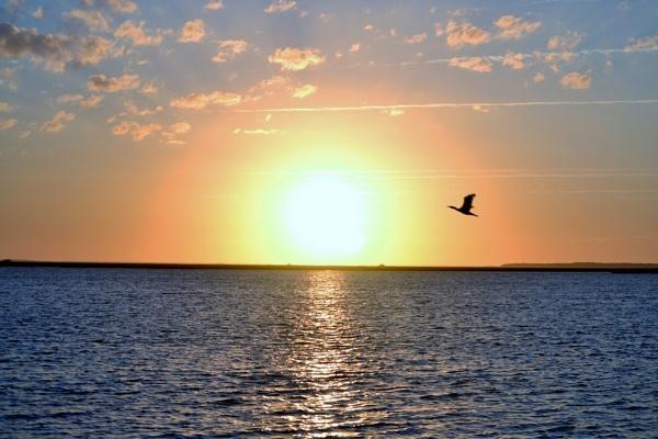 Georgia Sunset by kmfletch