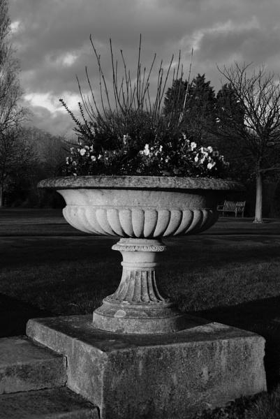 Flowerpot by Plunketfilm