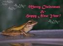 Merry Christmas :-) by photophantom