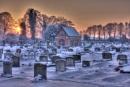 Wintry Graveyard