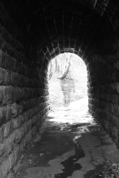 Tunnel Vision by SiPickles